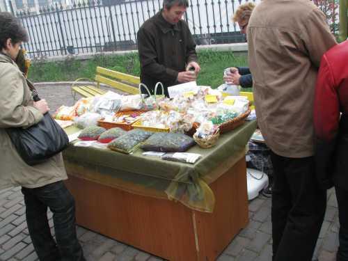 Ierburi de leac din Moldova